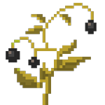 Ashberry Plant big.png
