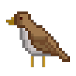 Bird big.png
