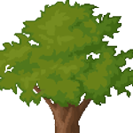 Oak Tree big.png